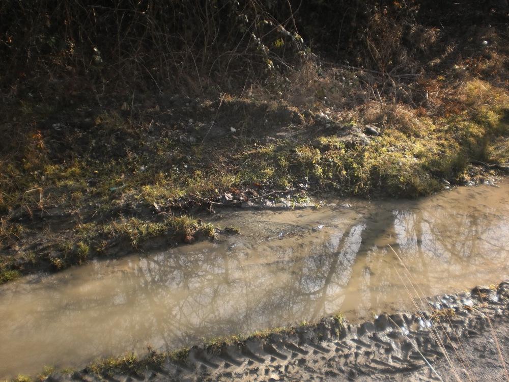 Могућа локација МНР; уз Зукву (2010) (трагови тракторских гума)