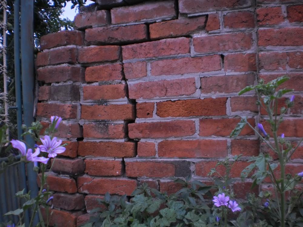Напукла ограда прекопута (опустелог газдинства В. С.) - 16. јул 2013. Снимак Заветине
