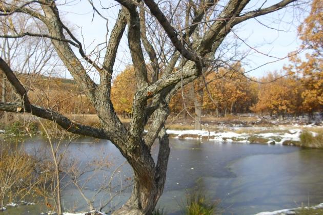 Миланово језеро, планина Радан (Фотодокументација Заветина, децембар 2013, Србија)